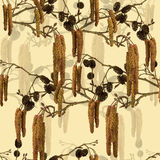 与桤木分支的无缝的样式。 皇族释放例证