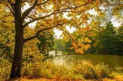 与桥梁的秋天风景 免版税图库摄影