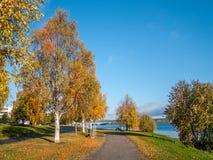 与桥梁的秋天风景 免版税库存图片