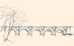 与桥梁的都市风景在河 得出花卉草向量的背景