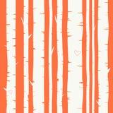 与桦树森林的无缝的传染媒介背景 免版税图库摄影