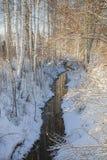 与桦树的冬天的风景 免版税库存图片