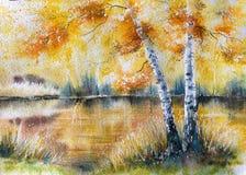 与桦树的秋天风景 免版税库存照片