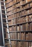与梯子和葡萄酒书的老图书馆部分 免版税库存照片