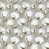与棉花花叶子的无缝的纹理 免版税图库摄影