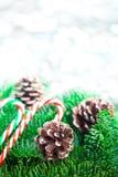 与棒棒糖的圣诞树分支在白色木书桌上 文本的平的位置空间 免版税库存图片