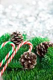 与棒棒糖的圣诞树分支在白色木书桌上 文本的平的位置空间 库存图片