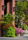 与棕榈、锦紫苏、地瓜藤、canna百合、mandevilla和喇叭花的花卉大农场主 库存图片
