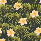 与棕榈叶和热带花的样式 向量例证