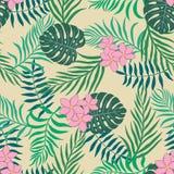 与棕榈叶和花的热带背景 无缝的植物群 库存图片