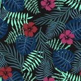 与棕榈叶和花的热带背景 无缝花卉的模式 夏天传染媒介例证 平的密林印刷品 库存照片