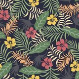 与棕榈叶和花的热带背景 无缝花卉的模式 夏天传染媒介例证 免版税库存照片