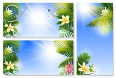 与棕榈叶和花的热带背景 库存照片
