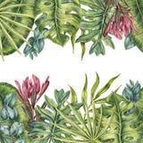 与棕榈叶子、上面和底部的热带边界 免版税库存图片