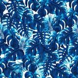 与棕榈叶的热带无缝的样式 免版税库存照片