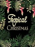 与棕榈叶的热带背景 书面词组-热带圣诞节 库存图片