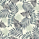 与棕榈叶的热带背景 无缝花卉的模式 S 库存照片