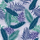 与棕榈叶的热带背景 无缝花卉的模式 S 免版税图库摄影