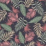 与棕榈叶的热带背景 无缝花卉的模式 S 库存图片