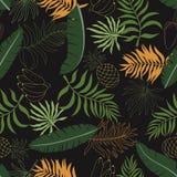 与棕榈叶的热带背景 无缝花卉的模式 S 免版税库存图片