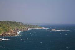 与棕榈和石头的海岸线 免版税图库摄影