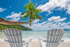 与棕榈和绿松石海的热带沙滩 免版税图库摄影