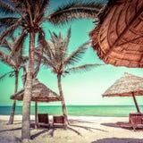 与棕榈树、椅子和伞的惊人的热带海滩 免版税库存照片