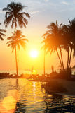 与棕榈树剪影的日落在一个热带海滩的 自然 免版税库存照片
