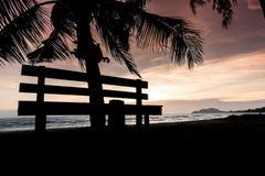 与棕榈树剪影的热带日落 库存图片