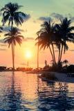 与棕榈树剪影的美好的日落在一个热带海滩 聚会所 库存图片