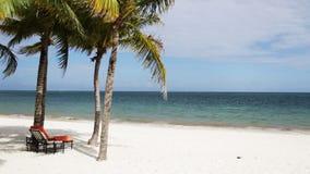 与棕榈树和休息室的热带海滩 股票录像