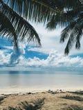 与棕榈树和低云的热带白色沙滩在天际上 免版税库存照片