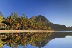 与棕榈树和山的热带海滩 免版税库存照片
