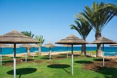 与棕榈树和茅屋顶伞的美好的seaview 普罗塔拉斯,塞浦路斯 免版税库存照片