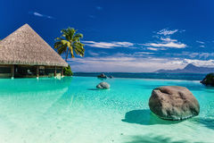 与棕榈树岩石的无限水池,塔希提岛,法属玻里尼西亚 免版税图库摄影