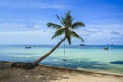 与棕榈树的一个美丽的海滩在酸值陶,泰国 免版税库存照片