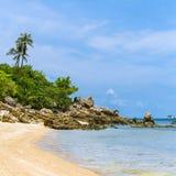 与棕榈树的一个美丽的热带海滩在酸值Phangan海岛 免版税库存图片