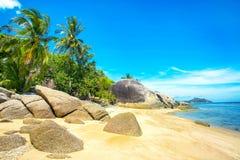 与棕榈树的一个美丽的热带海滩在酸值Phangan海岛 免版税库存照片
