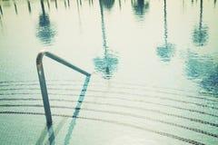 与棕榈树的反射的水池 免版税库存照片
