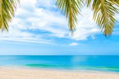 与棕榈树的夏天海滩在蓝天 免版税库存图片