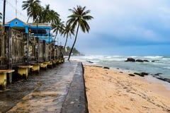 与棕榈树的天堂海滩 免版税库存图片