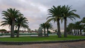 与棕榈树的庭院正方形 图库摄影