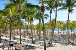 与棕榈树的拥挤海滩区域 免版税图库摄影