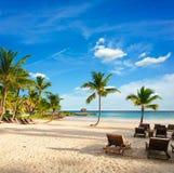 与棕榈树的日落梦想海滩在沙子。 热带天堂。 多米尼加共和国,塞舌尔群岛,加勒比,毛里求斯。 葡萄酒 免版税库存照片