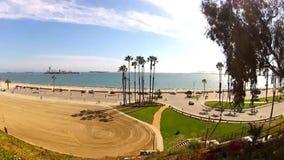 与棕榈树的海滩太平洋 股票录像