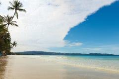与棕榈树的海视图 免版税库存照片