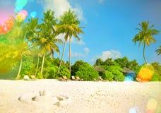 与棕榈树的热带海岛沙子海滩 晴朗的蓝天与 免版税库存图片