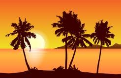 与棕榈树的热带海岛风景传染媒介在橙色sunse 库存例证