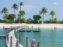 与棕榈树的热带白色沙滩 库存照片