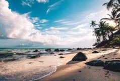 与棕榈树的美丽的海滩在黎明 免版税库存图片